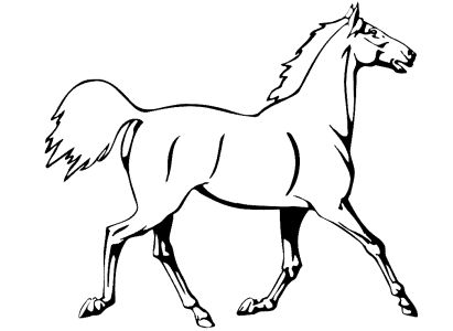 P2057 Wandtattoo 20Exquisite 20Animals 2098 besides Knochen moreover Bonecos De Tecido moreover Free Printable Coloring Pages Of Horses furthermore Cat And Dog Drawings. on dogs de moldes